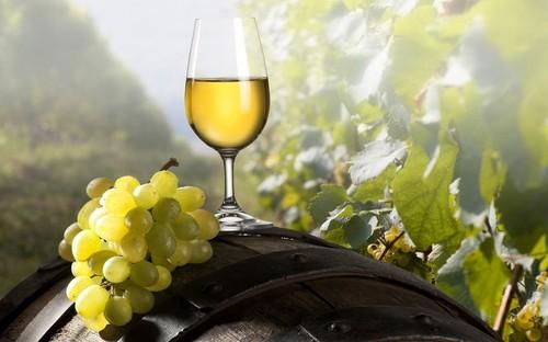 Лучшие крымские вина, которые обязательно стоит попробовать