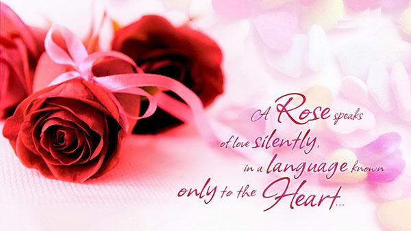Поздравления влюбленным в стихах и прозе