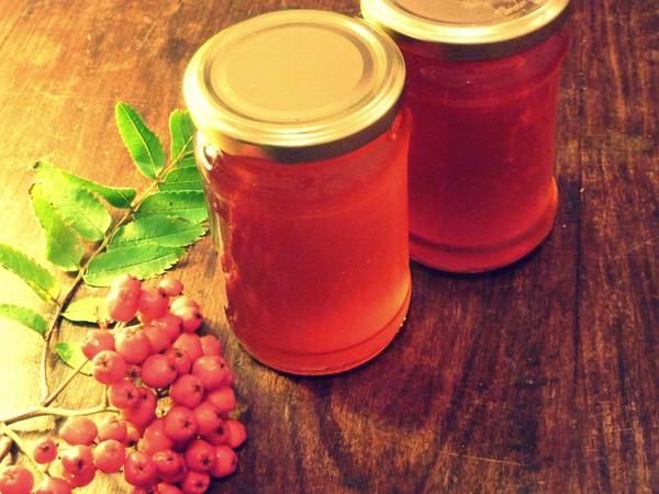 Рябина на зиму: рецепты заготовок из обычной красной и черноплодной рябины