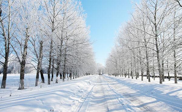 Погода в Москве и Московской области в январе 2018 - самый точный прогноз от Гидрометцентра