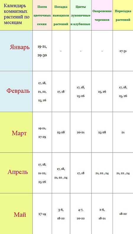 Лунный посевной календарь на февраль 2018 для цветоводов и садоводов-огородников Подмосковья и Средней полосы России