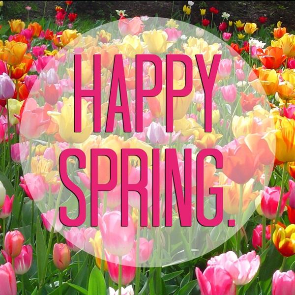 Красивые прикольные картинки и поздравления с первым днем весны 2018