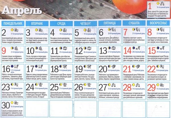 Лунный посевной календарь на апрель 2018 для садоводов-огородников и цветоводов России (таблицы)