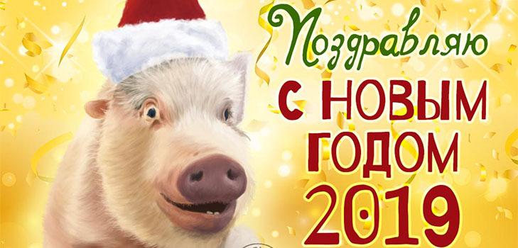 поздравления с новым годом 2019 свиньи картинки