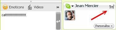 Секретные смайлы Skype