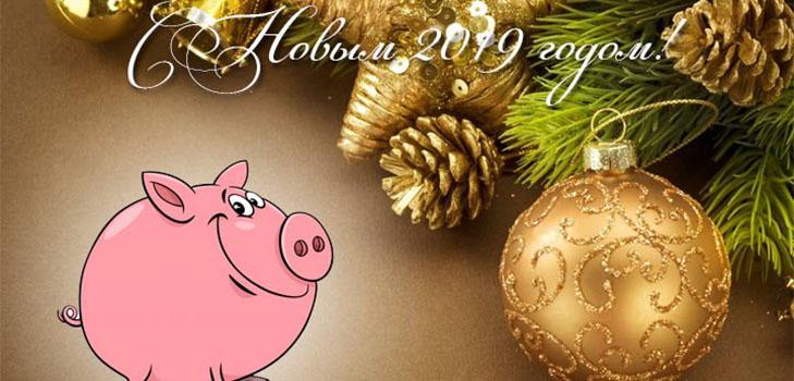 Стихи с Новым 2019 годом Свиньи: красивые, короткие и прикольные с поздравлениями, душевными пожеланиями