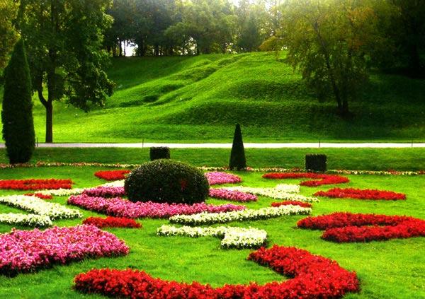 Устройство газона на вашем участке