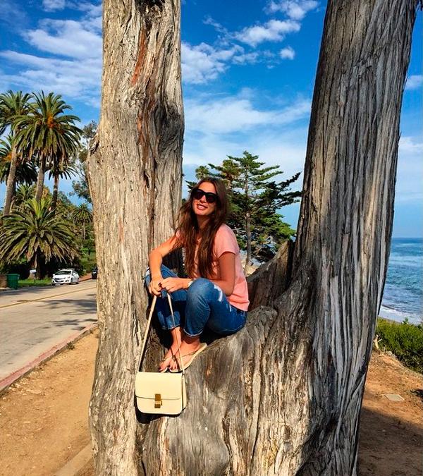 Топурия на дереве