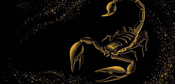 Идеальный знак зодиака для мужчины скорпиона