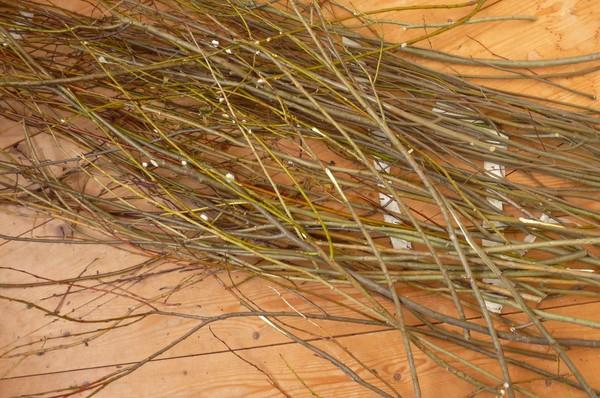 pletenie-iz-lozy-1 Плетение из прутьев ивы для начинающих
