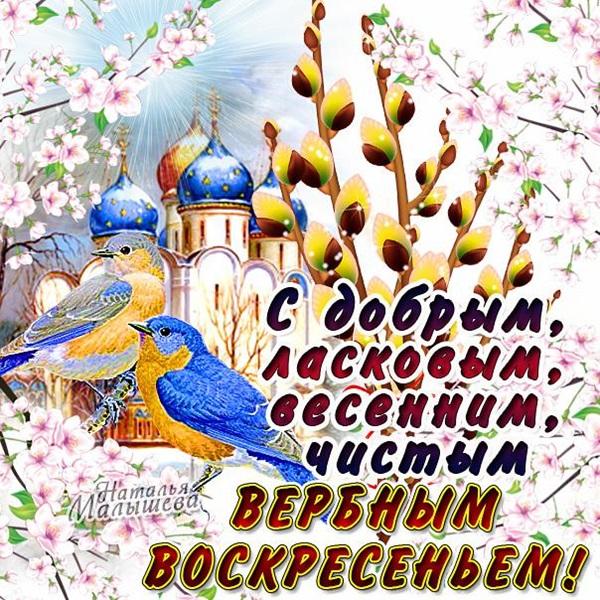Казанской, поздравление с вербный воскресеньем открытки