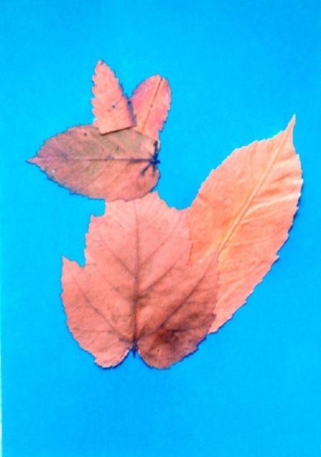 kartinki-iz-listev-belka-5 Картины из листьев и цветов своими руками для детского сада и школы