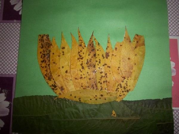 kartinki-iz-listev-cvetov-3 Картины из листьев и цветов своими руками для детского сада и школы