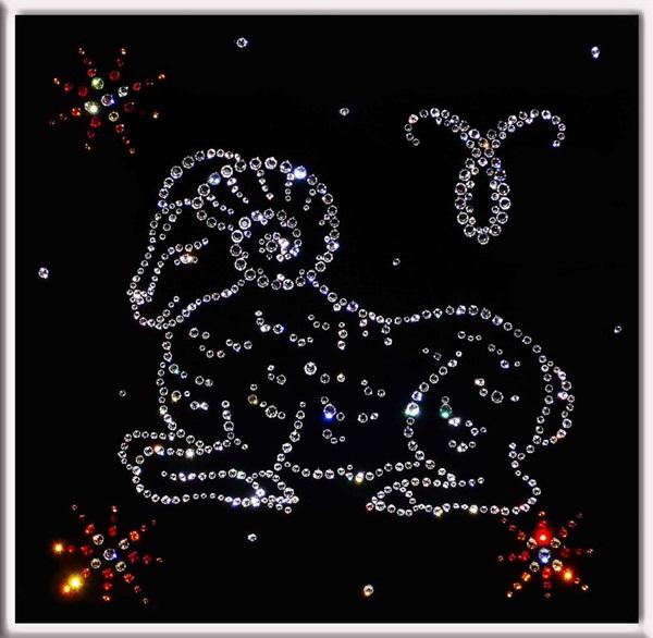 Гороскоп на 2019 год от Тамары Глоба по знакам зодиака