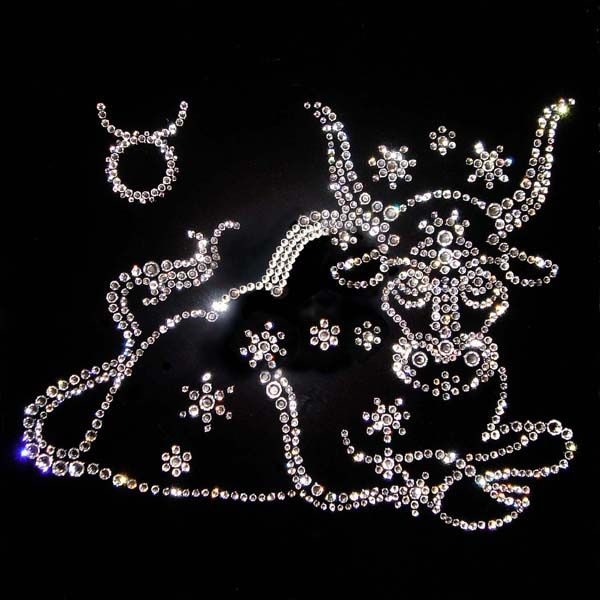 Гороскоп на 2019 год Свиньи от Тамары Глоба по знакам зодиака